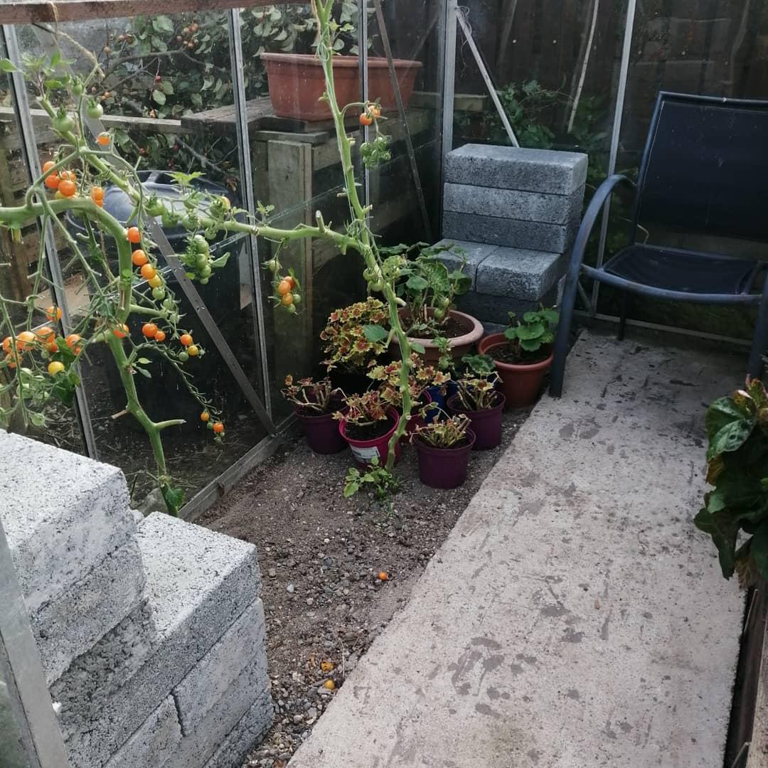 Tomato Workaround
